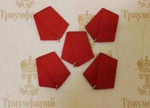 Колодка для медалей красная