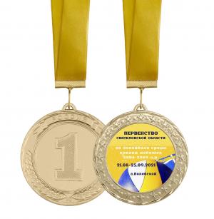 Медаль -  Областное первенство по волейболу с лентой и вкладышем